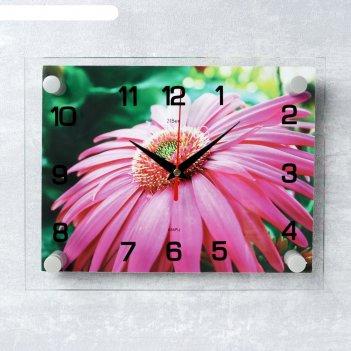 Часы настенные, серия: цветы, розовая гербера, 20х26 см микс