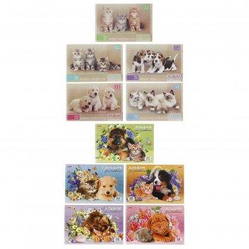 Альбом для рисования а4, 32 листа на гребне «зверьё моё» обложка картон 18