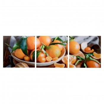 Модульная картина мандариновое настроение (3-35х35) 35х105 см