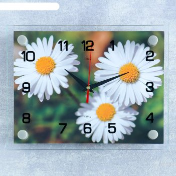 Часы настенные, серия: цветы, ромашки, 20х26 см  микс