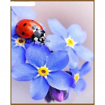 Алмазная мозаика незабудки, 29 цветов