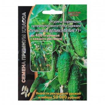 Семена огурец пучковое великолепие f1 скороспелый, пучковый, партенокарпич
