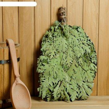 Веник для бани экстра из кавказского дуба, в индивидуальной упаковке