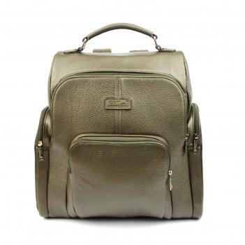 Сумка мужская н/к 608б (рюкзак), оливковый флотер, металлик