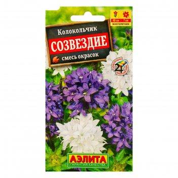 Семена цветов колокольчик созвездие, смесь окрасок, мн, 0,05 г