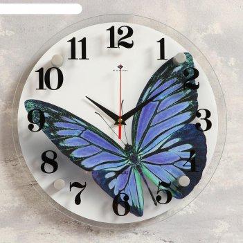 Часы настенные, серия: животный мир, бабочка, 30х30 см