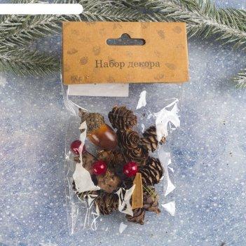 Набор новогоднего декора пряные шишки