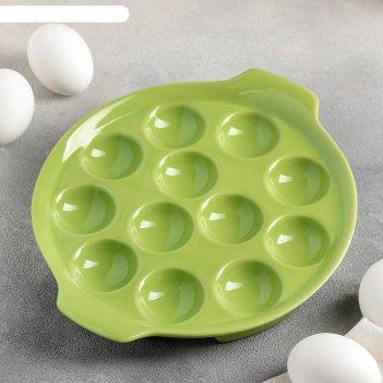 Подставка для яиц «фарбе», 22x4 см, цвет зелёный