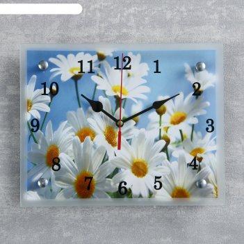 Часы настенные, серия: цветы, ромашки, 20х25  см, микс