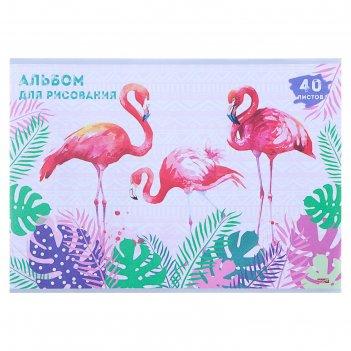 Альбом для рисования а4, 40 листов на скрепке «розовые фламинго в зарослях