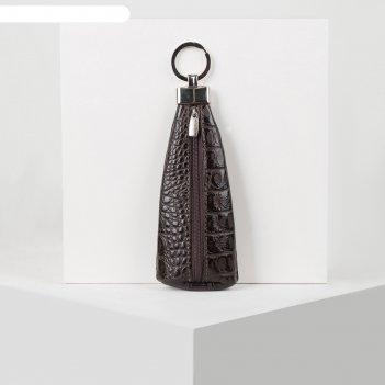 Ключница, отдел на молнии, 2 металлических кольца, цвет коричневый