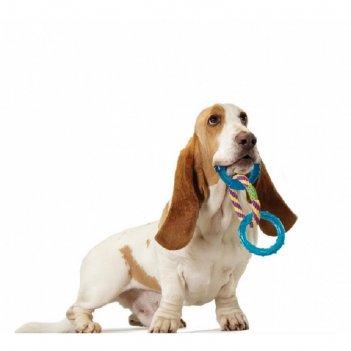 Игрушка petstages орка 3 кольца  для собак, 23 см