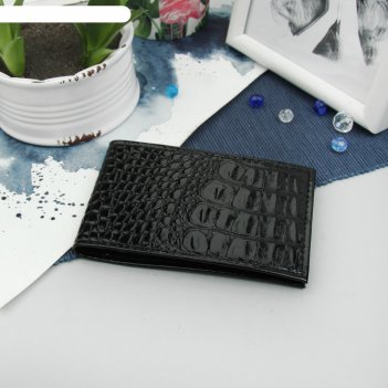 Визитница, 1 ряд, 18 листов на 36 карточек, черный кайман
