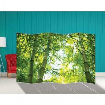 Ширма бамбук. декор 3 250 x 160 см